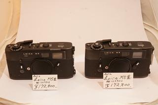DSC02528.JPG